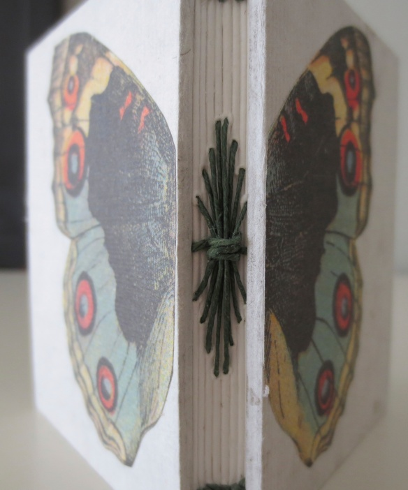 Here, an exposed binding gives appearance of butterfly body.
